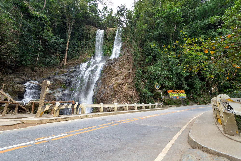 view of tamaraw falls from the main road